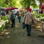 露店が並ぶ朝の新鮮野菜市場